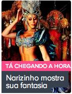 ex-Panicat Narizinho mostra sua fantasia